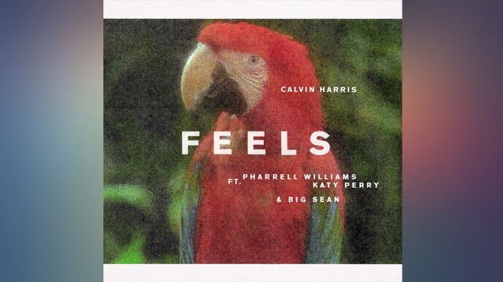 Photo of Calvin Harris – Feels