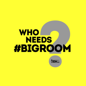 whoneedsbigroom