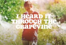 Photo of #Release | Campsite Dream – I Heard It Through The Gravepine