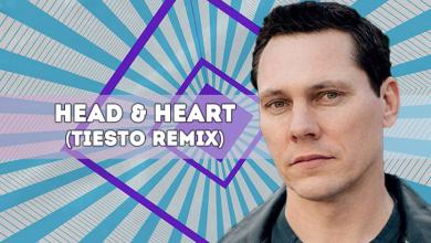 head & heart tiesto remix edm lab