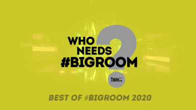 Photo of Best of #BigRoom 2020 – Special Podcast Episode